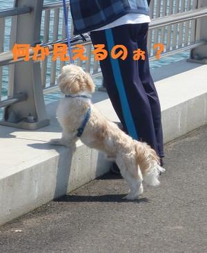 201305041_2